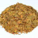 dried ginkgo biloba leaves for tea