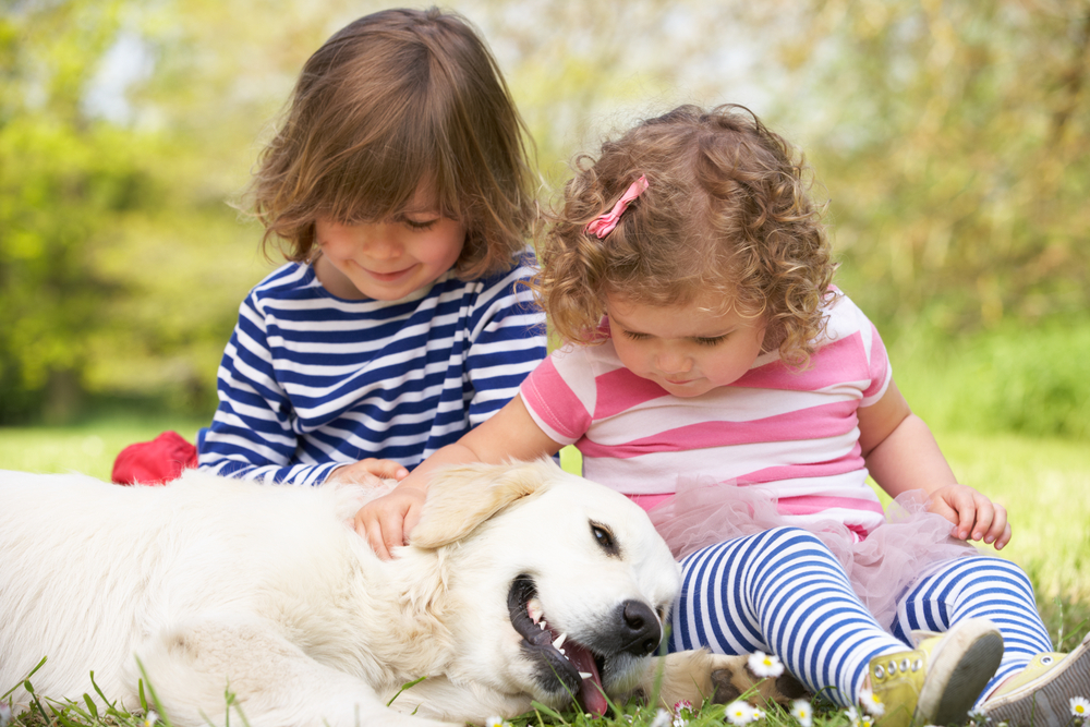 golden retriever dog playing with two little girls in the yard